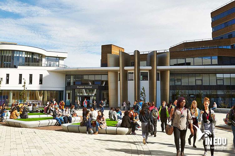 Các chương trình Dự bị Đại học nhằm hỗ trợ sinh viên quốc tế