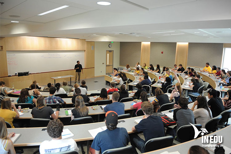 Một số chương trình học tiêu biểu dành cho du học sinh