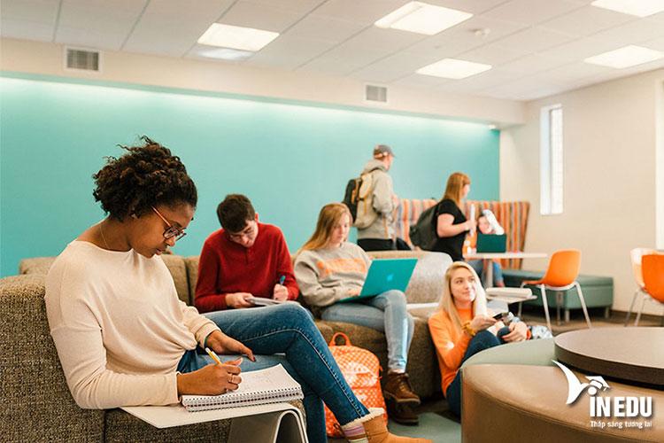 Các ngành học đa dạng phù hợp với nhu cầu học thuật của sinh viên