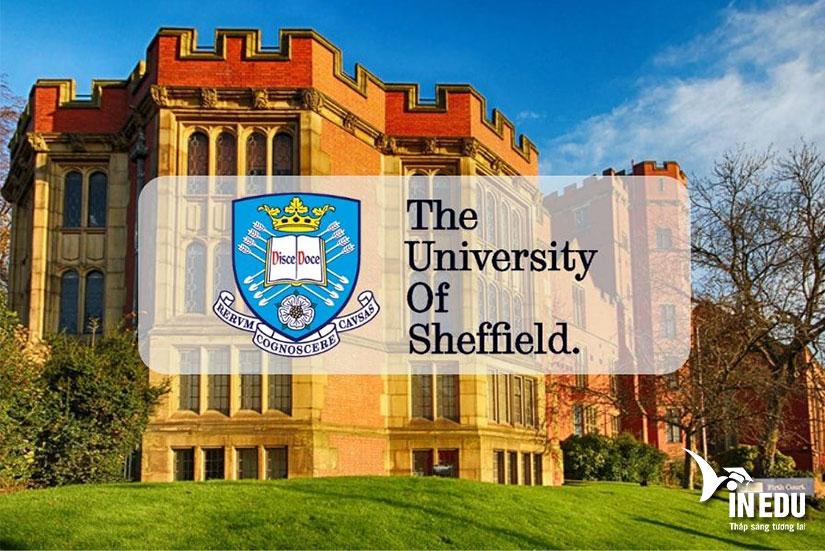 Đại học Sheffield, ngôi trường năng động bậc nhất nước Anh