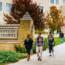 Học bổng lên tới 70% của trường Đại học St Thomas