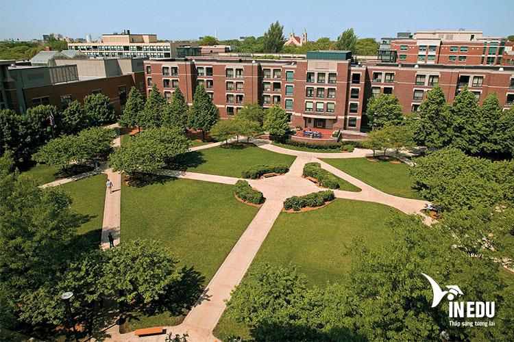 Học tập và trải nghiệm môi trường năng động tại trường Đại học DePaul