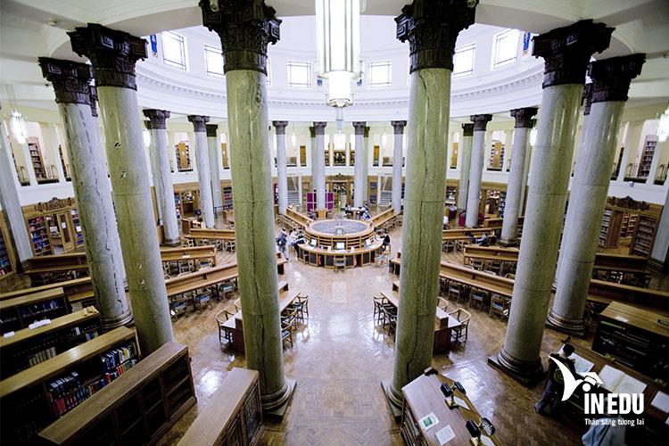 Thư viện của trường vô cùng rộng lớn và xinh đẹp