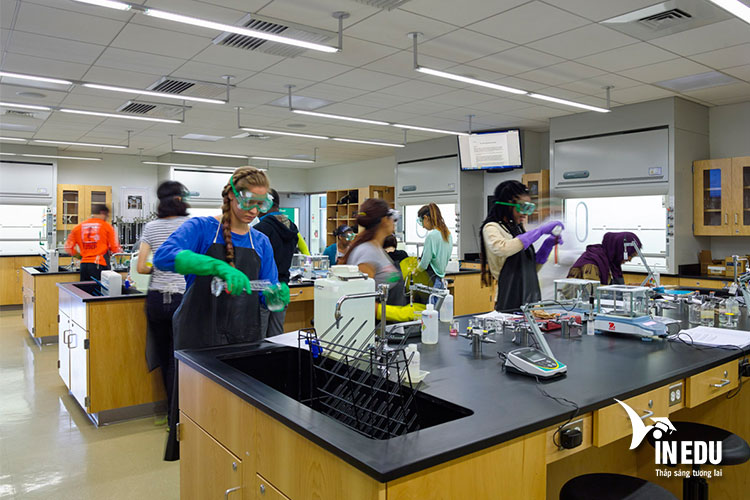 Các chương trình học tập và đào tạo hàng đầu mang đến nhiều cơ hội cho du học sinh