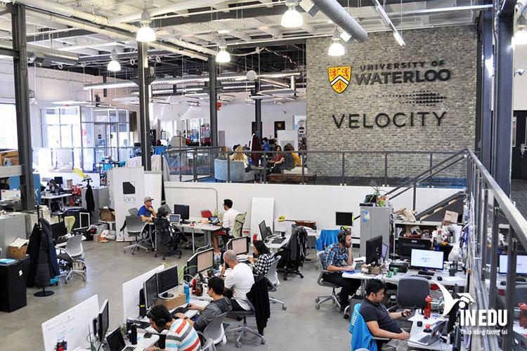 Các trương trình đào tạo của University of Waterloo