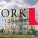 Đại học York, Canada - 1 trong 3 ngôi trường lớn nhất tại xứ sở lá phong