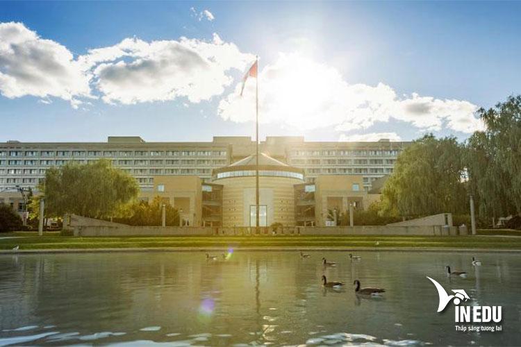 Đại học York, Canada, môi trường học tập đáng mơ ước của sinh viên quốc tế