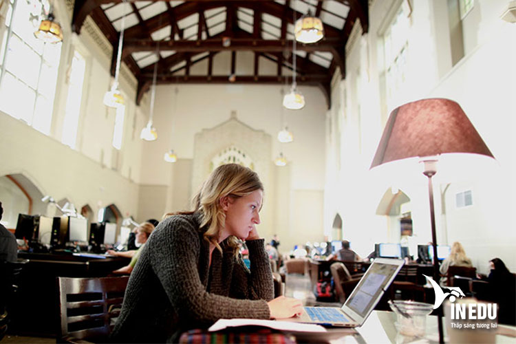 Yêu cầu chung và cách thức đăng ký các chương trình tại trường British Columbia