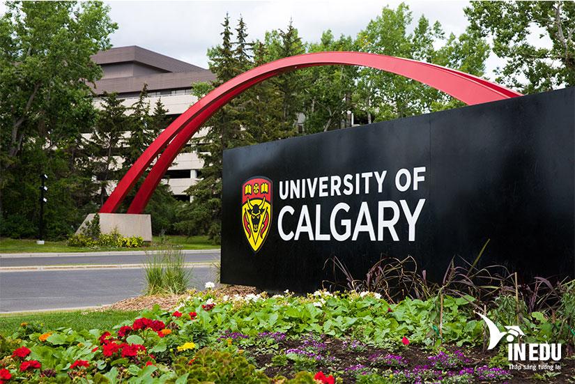 Đại học Calgary Canada - ngôi trường nghiên cứu hàng đầu hiện nay