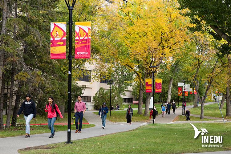 Du học Canada tại trường Đại học Calgary
