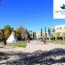 Mount Royal University: Du học Canada chi phí hợp lý nhất