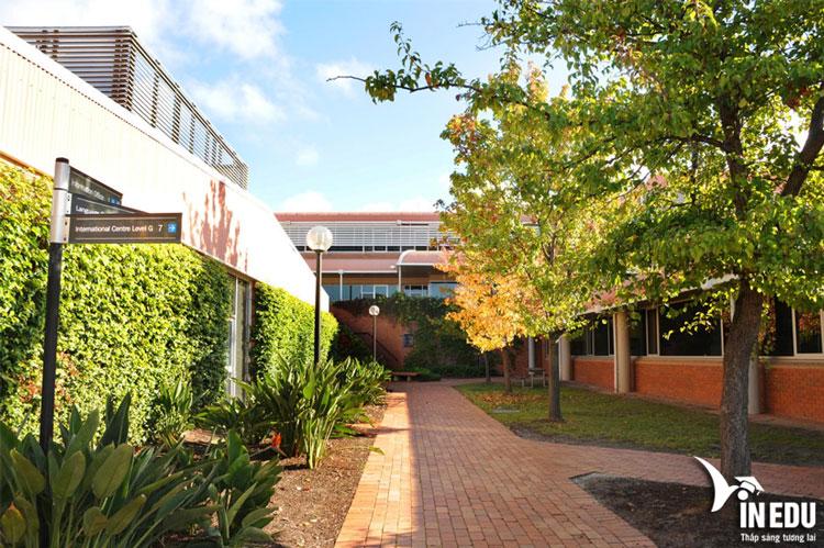 Cơ sở vật chất và đời sống sinh viên của Holmesglen