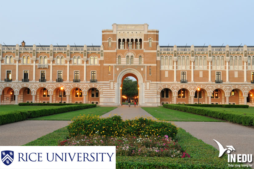 Du học Mỹ các chương trình tiềm năng, hãy chọn Đại học Rice