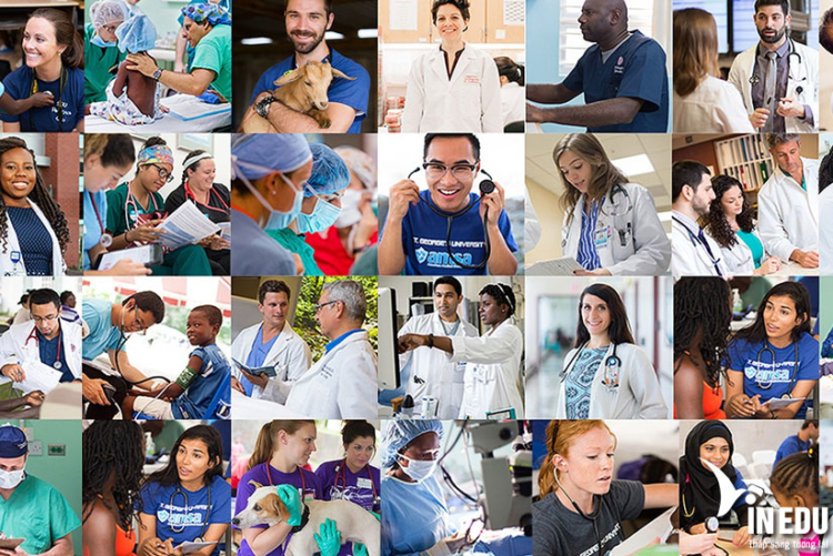 Trở thành Bác sĩ tại Mỹ với St. George University