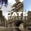 CATS College – Học bổng toàn phần cho học sinh tiềm năng