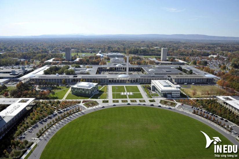 Học bổng $17,500/năm từ University at Albany - học phí chỉ còn 13,000/năm!